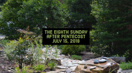 The Eighth Sunday after Pentecost