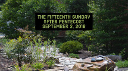 The Fifteenth Sunday after Pentecost